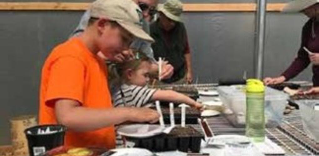 Idyllwild Community Garden: Let's Get Growing